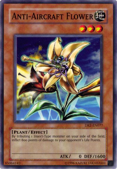 Anti-Aircraft Flower