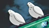 PigeonToken-JP-Anime-DM-NC.png