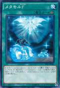 Metamorformation-TDIL-JP-C