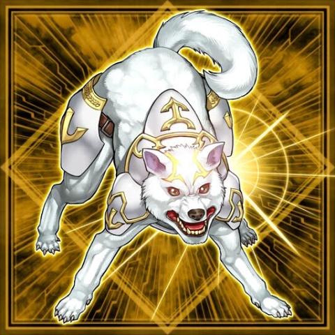 Ryko, Cacciatore Fedele della Luce