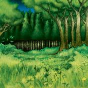 Forest-DG-EN-VG-Field