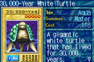 30000YearWhiteTurtle-ROD-EN-VG