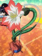 Amarylease-JP-Anime-ZX-NC