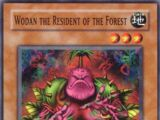 Wodan the Resident of the Forest