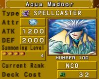 AquaMadoor-DOR-EN-VG.png
