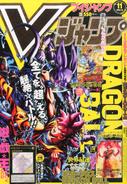 VJMP-2015-11-Cover