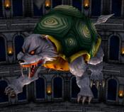TurtleTiger-DOR-EN-VG-NC