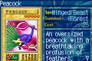 Peacock-ROD-EN-VG
