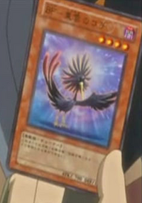 BlackwingKochitheDaybreak-JP-Anime-5D.png