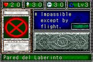 LabyrinthWall-DDM-SP-VG