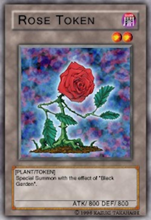 Segna-Rosa
