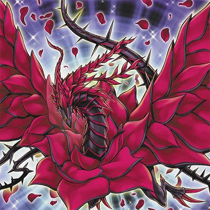 Rose Dragon