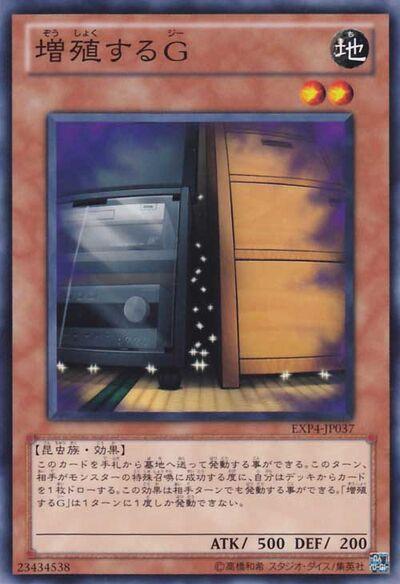 MaxxC-EXP4-JP-NR.jpg