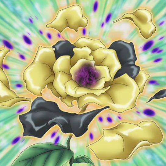Fleur de Vertiges