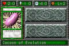 CocoonofEvolution-DDM-EN-VG.png