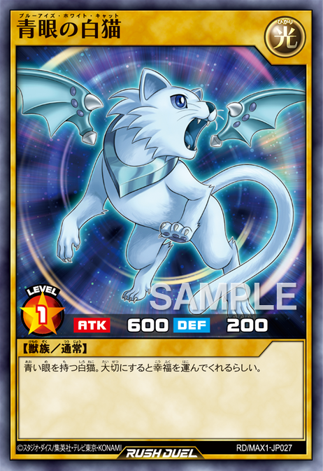Blue-Eyes White Cat