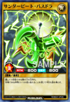 ThunderbeatleBassdru-RDMAX1-JP-OP