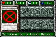 WitchoftheBlackForest-DDM-FR-VG