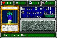 The Snake Hair (DDM)