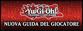 Banner guida.png