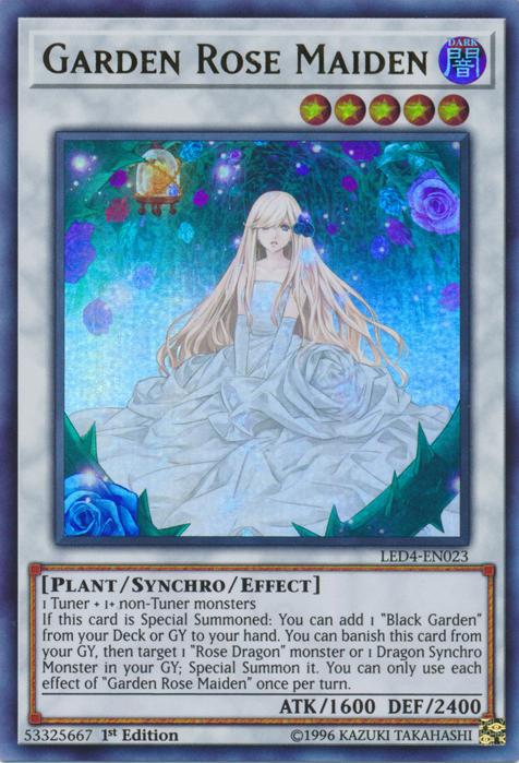 Garden Rose Maiden