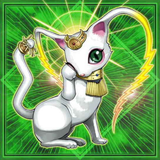 Rinyan, Ladro Fedele della Luce