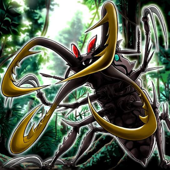 Escarabajo de Espadas Cruzadas