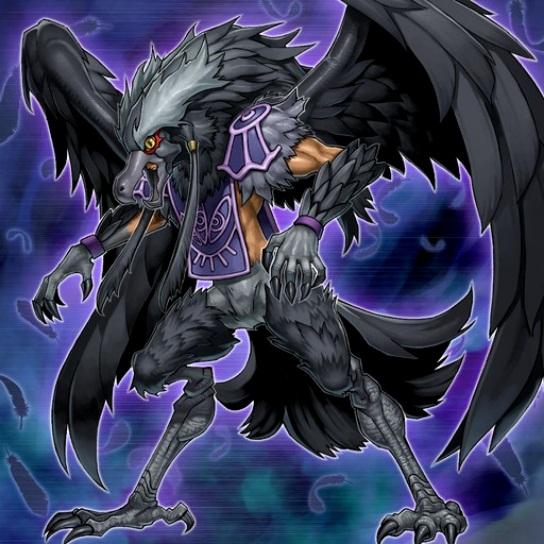 Alanegra - Elphin el Cuervo