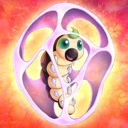 Foto escarabajo crisálida.jpg