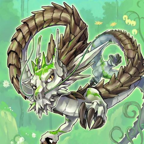 Dragonteza Naturia