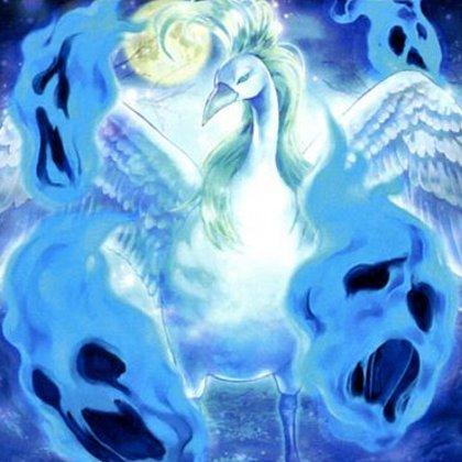 Pájaro Fantasma del Embrujo