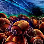 Foto enjambre de escarabajos