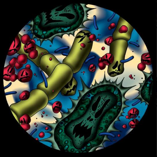 Infección de Germenes