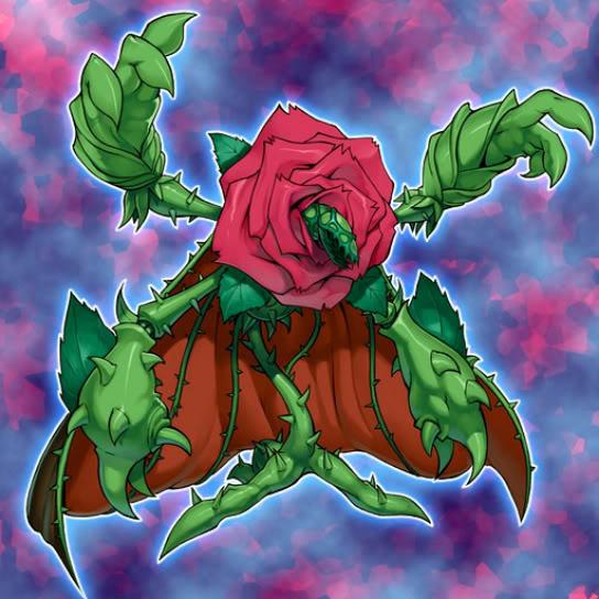 Rosa Regeneradora