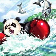 Foto panda golpeante
