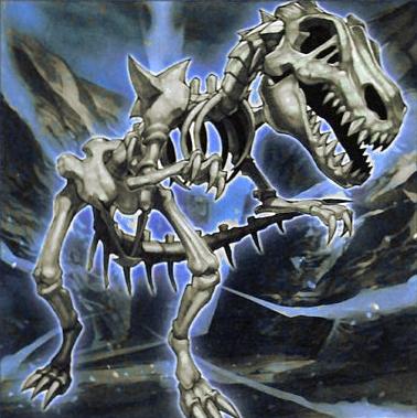 Dragón Fósil Craneogios