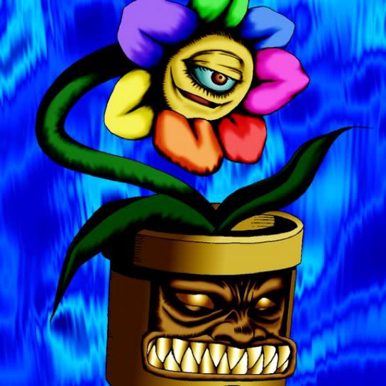 Flor del Arco Iris