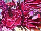Dragón de la Rosa Rojiza