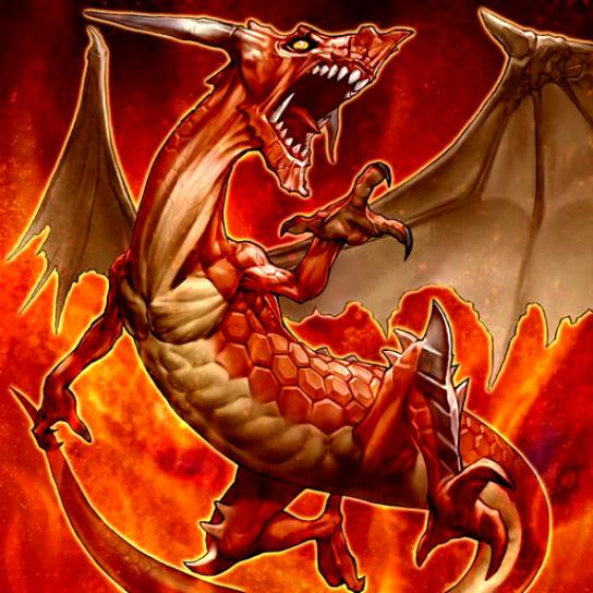 Magna Dragón