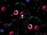 Eyeball Cherry Fields
