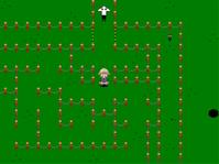 Dream park maze