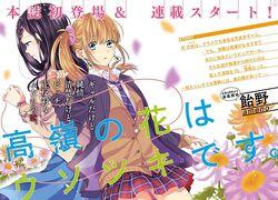 Takane no Hana wa Usotsuki desu.jpg