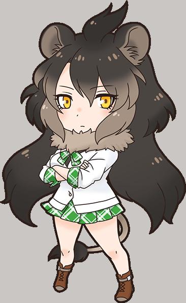 Transval Lion