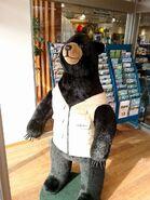 Vol 6 montbell bear