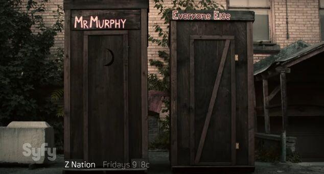 Mr.Murphy.jpg