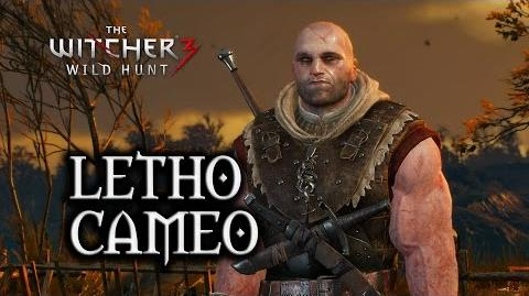 The_Witcher_3_Wild_Hunt_-_Letho_Cameo_Ghosts_of_the_Past_Quest