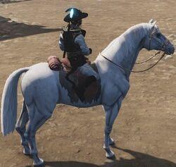 Whitea Horse.jpg
