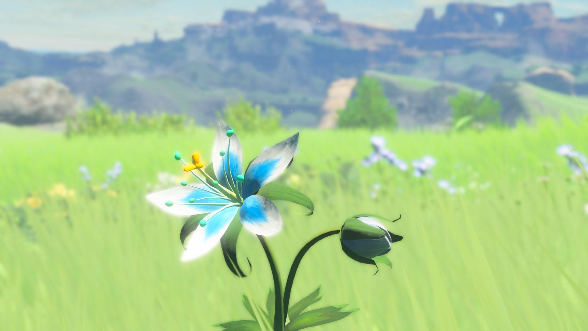 Silent Princess Zeldapedia Fandom
