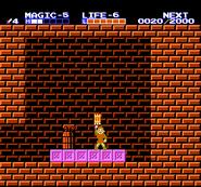 Link consiguiendo la balsa TAoL