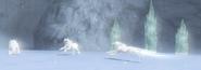 Lobo Blanc Link's Crossbow Training